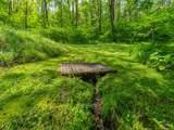 104 Wilderness Trail - Photo 10