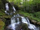 315 Shoals Falls Road - Photo 1