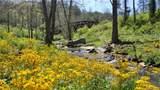 25 Tulip Poplar Trail - Photo 35