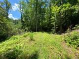TBD Williamson Creek Road - Photo 5