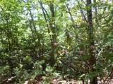 Lot 15C Oconee Falls - Photo 9