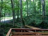 TBD Bear Trail - Photo 4