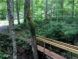 TBD Bear Trail - Photo 5