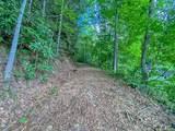 2644 Cove Creek Road - Photo 2