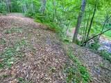 2644 Cove Creek Road - Photo 5