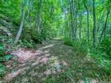 2644 Cove Creek Road - Photo 6