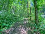 2644 Cove Creek Road - Photo 8