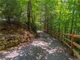 198 Running Deer Trail - Photo 7