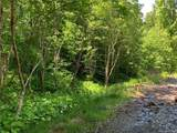 10.19 Acres Lytle Cove Road - Photo 4