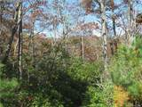 347 Mountain Falls Trail - Photo 7