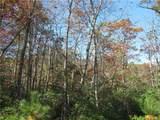 347 Mountain Falls Trail - Photo 8