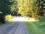 4967 Surfwood Drive - Photo 5