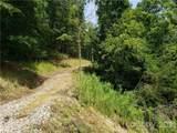 75 Lemon Creek Drive - Photo 4