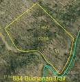 884 Buchanan Trail - Photo 41