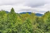 25 Hyatt Mountain Drive - Photo 30