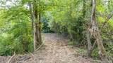 8.58 Acres Crump Road - Photo 6