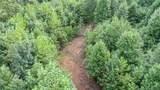 8.58 Acres Crump Road - Photo 7