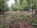 8.58 Acres Crump Road - Photo 9