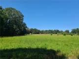 1704 Rhyne Road - Photo 9