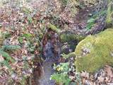 000 Roaring Fork Road - Photo 20