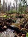 325 Boundary Tree Pass Pass - Photo 15