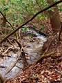 325 Boundary Tree Pass Pass - Photo 16