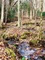 325 Boundary Tree Pass Pass - Photo 21