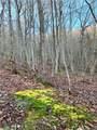 325 Boundary Tree Pass Pass - Photo 6