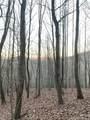 325 Boundary Tree Pass Pass - Photo 7