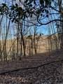 325 Boundary Tree Pass Pass - Photo 9