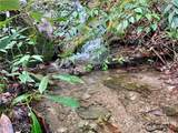 TBD Silver Maple Trail - Photo 1