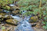 0000 Bear Paw Ridge Road - Photo 4
