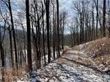 TBD Eastatoe Gap Road - Photo 28
