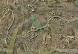 10509 Green Heron Court - Photo 3