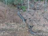 9999 Sequoia Trail - Photo 4