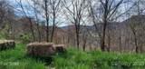 0000 White Oak Trail - Photo 4