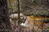 151 Rattlesnake Trail - Photo 7