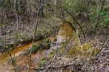 151 Rattlesnake Trail - Photo 8