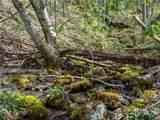 299 High Hickory Trail - Photo 15