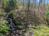 299 High Hickory Trail - Photo 3