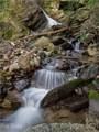 299 High Hickory Trail - Photo 4
