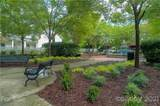 232 Coneflower Place - Photo 45