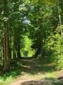 4229 Suzuki Trail - Photo 45