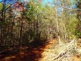 8836 Jacob Fork River Road - Photo 13