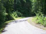 Lot 99 Whispering Woods Path - Photo 15