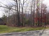 70 Running Creek Trail - Photo 2