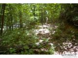 0 Roaring Fork Road - Photo 1