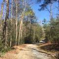 5 Log Cabin Lane - Photo 2