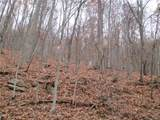 TBD Chestnut Ridge Road - Photo 2