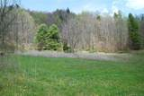 TBD Meadow Fork Road - Photo 2